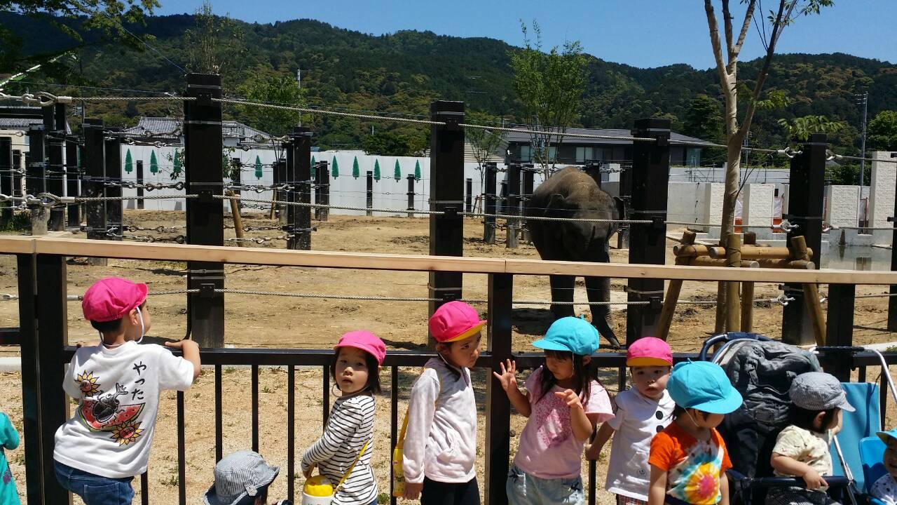 動物園遠足 キャッチ画像