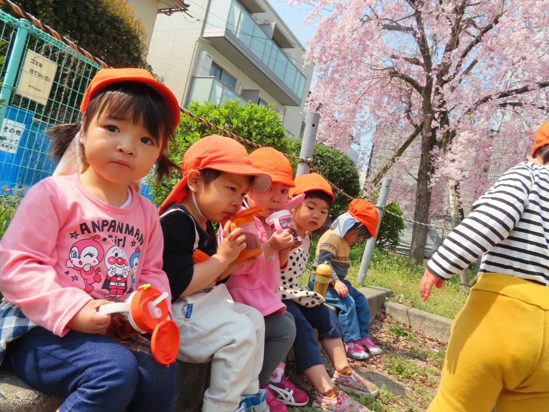 4月🌸元気な子どもたち☺️~長岡京園~