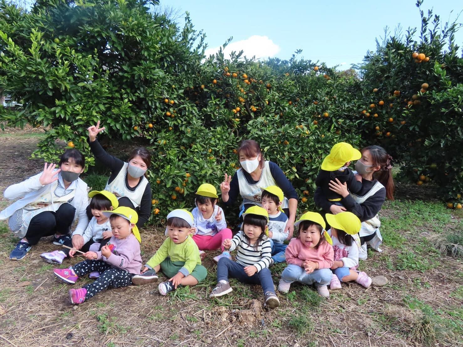 保護中: みかん狩り🍊山科園 キャッチ画像