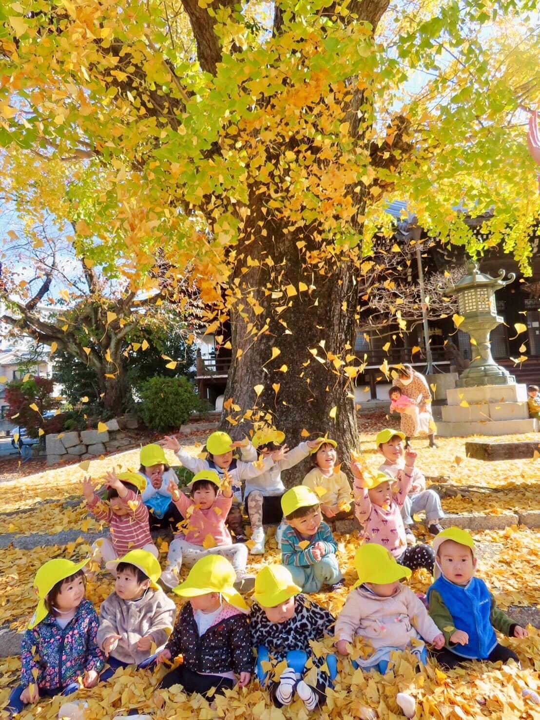保護中: 12月も元気いっぱいの子どもたち✨山科園 キャッチ画像