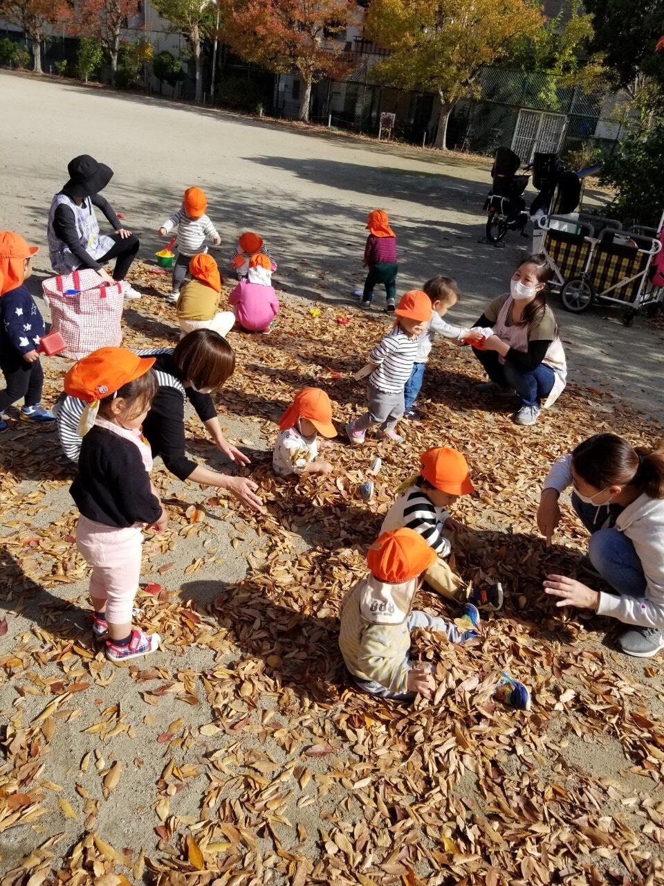 保護中: 11月🍂戸外遊び🍁〜長岡京園〜🍂 キャッチ画像