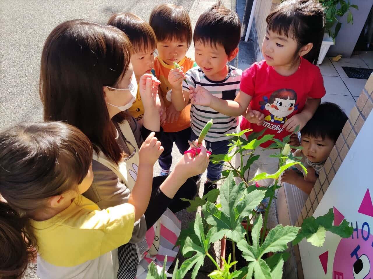 保護中: 🍀🍀食育🥕  竹田園