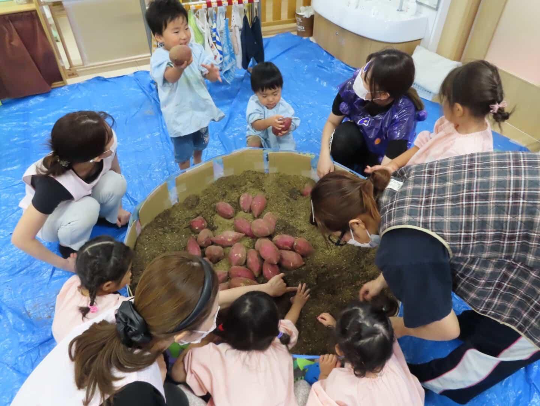 保護中: 芋掘りごっこ🍠長岡京園 キャッチ画像